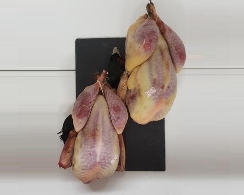 Coq Faisan